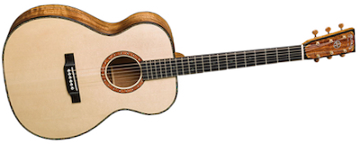 Martin CS-OM True North - 16