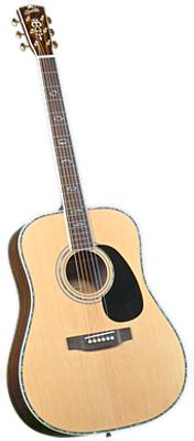 Blueridge BR-70