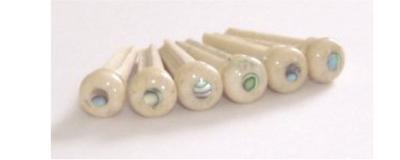 Fossilized Walrus Jawbone bridge pins abalone