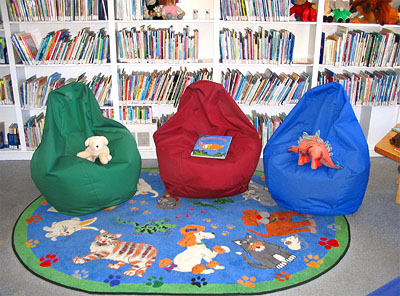 Library Bean Bag Chairs