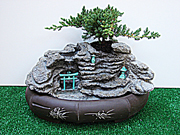 Bonsai Water Fall Fountain