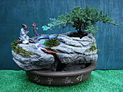 Illuminating Bonsai Waterfall Fountain